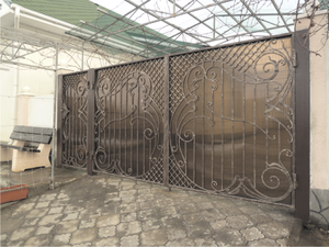 Ворота и калитка в частном доме